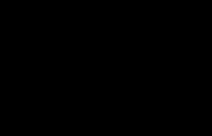 Wenskiezel logo, variant, zwart zonder cirkel, definitief